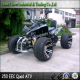 EEC Standard 14 Inch Street Wheel Legal Racing ATV 250cc Quad Bike