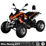 250CC Sport ATV Racing Quad Kawasaki EEC 250CC Racing ATV