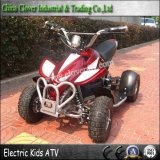 Safety Electric 350W Quad ATV 24V Kids Four Wheel Bikes with ISO