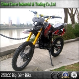 CE 250CC Powerful Dirt Bike with 19 inch 16 inch Big Wheel