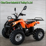 Orange Color High Configurations ATV Sport Quad Bike 110cc With CE