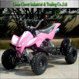 49CC Mini ATV Quads Bike 49CC Motor with CE Certificates