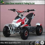 6 inch Big Wheel ATV 49CC Motor Quad Bike with Bull Bar